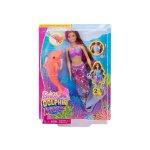 Кукла Barbie - Комплект за игра, с опашка на русалка и делфин