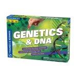 Игра Генетика и ДНК